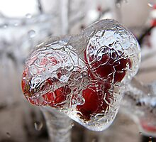Iced Fruit view by Marina Kropec