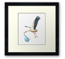 Special Delivery: Baby Blue Framed Print