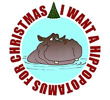 Hippopotamus for Christmas Photographic Print