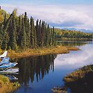 Come fly with me to Alaska! by Patricia Montgomery