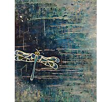 Dragonfly: For Rae With Love Photographic Print
