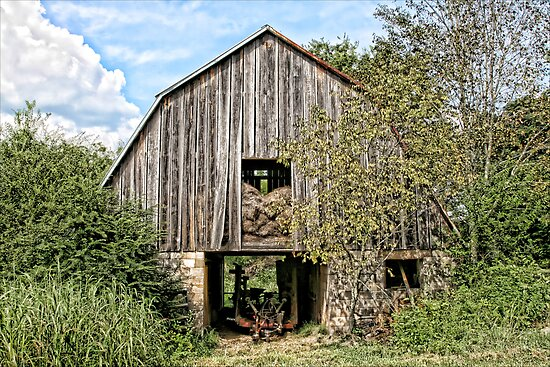 Old Mule Barn by Patricia Montgomery
