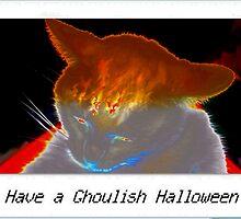 Ghoulish white cat by ♥⊱ B. Randi Bailey