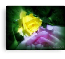 Oil Painted Rose Canvas Print