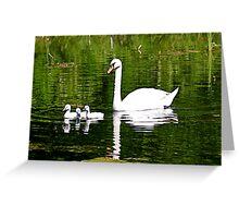 Mute Swan & Cygnets Greeting Card
