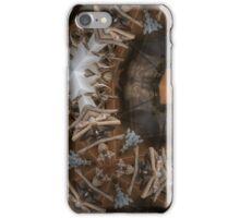 cabinet iPhone Case/Skin