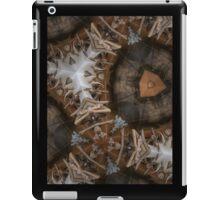 cabinet iPad Case/Skin