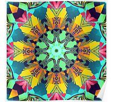 Colour and Pattern Mandala Poster