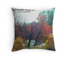 Autuum Marsh  Throw Pillow