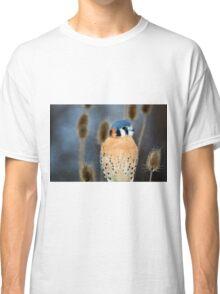 Adult Male American Kestrel Bird Classic T-Shirt