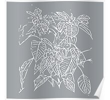 The Plant (grey) Poster