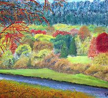 Autumn on Tweed, below Innerleithen by BillCowe