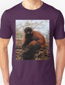 Lemur Laughter T-Shirt