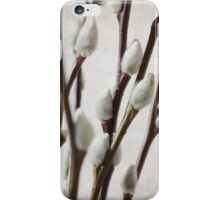 Pussy Willow part 3 iPhone Case/Skin
