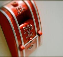 In Case of Fire by Robert Baker