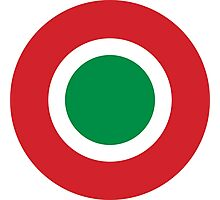 Roundel of the Italian Air Force  Photographic Print