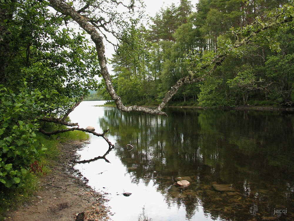 Riverside Reflections by jacqi