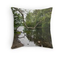 Riverside Reflections Throw Pillow