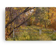 Autumn in Manitoba Canvas Print