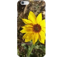 Lonely little sunflower  iPhone Case/Skin