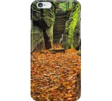 Hidden Passageway iPhone Case/Skin