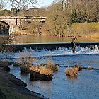 The Weir by John (Mike)  Dobson