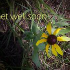 Get well by Valeria Lee