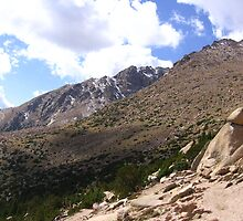 Barr Trail, Timberline, Pike's Peak, CO 2008 by J.D. Grubb