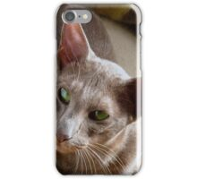 Farida the lilac Oriental cat iPhone Case/Skin