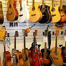 The Music Shop by Fara