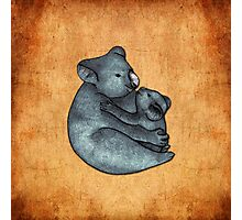 Koalas - a cute hand drawn illustration of a mother koala and her baby Photographic Print