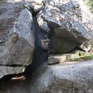 Rock by lilestduncan