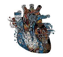 Heartonomy by Tory Van Wey