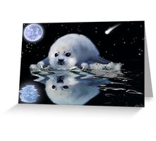 DESTINY The Harp Seal Greeting Card
