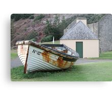Norfolk Island Metal Print