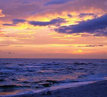 Sky and Sea Panorama by Sandy Keeton