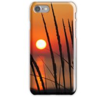 Sunset and Dune Grasses iPhone Case/Skin