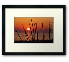 Sunset and Dune Grasses Framed Print
