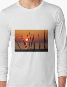 Sunset and Dune Grasses Long Sleeve T-Shirt