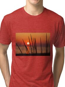 Sunset and Dune Grasses Tri-blend T-Shirt