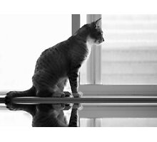 Maggie on the Window Photographic Print