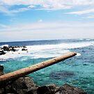Makapu'u Point - Oahu, Hawaii by abfabphoto