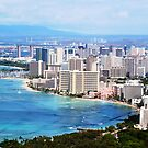 View From Diamond Head by abfabphoto