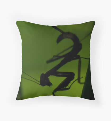 Silhouette of a graceful killer Throw Pillow