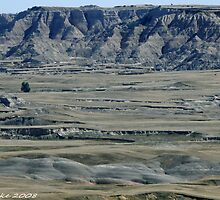 #591  Terrain Of The Badlands by MyInnereyeMike