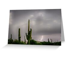 Sonoran Monsoon Lightning Thunderstorm Delight Greeting Card