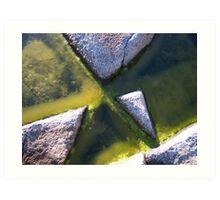 Rock and Algae Art Print