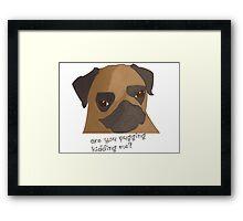 Are you pugging kidding me? Framed Print