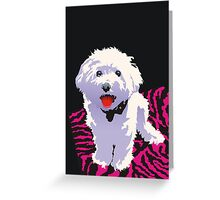 Scarlet Greeting Card
