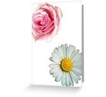 Rose & daisy Greeting Card